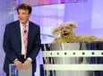 """MILANO 03/07/2012 - TRASMISSIONE TV """"ESTATE IN TV CON NOI"""" IN ONDA DAL LUNEDI' AL VENERDI' SU RAI UNO ALLE 12:00  NELLA FOTO : PAOLO LIMITI, DORA FLORA  FOTO : INFOPHOTO"""