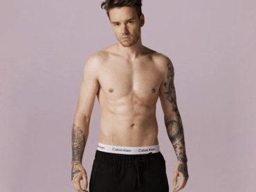 Liam Payne promette: 'NUDO FRONTALE se Strip That Down volerà in prima posizione'