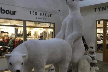 Orsi Polari che sembrano fare sesso anale, centro commerciale si scusa per l'esposizione natalizia