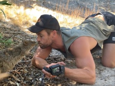 Chris Hemsworth, il saluto a novanta al marsupiale è virale: video