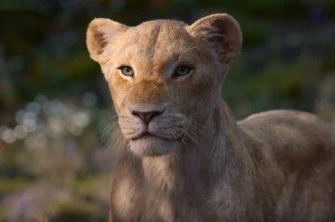Il Re Leone, ecco la voce di Beyoncè nel nuovo spot – video