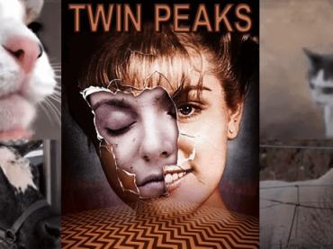Twin Peaks, il tema di Angelo Baladamenti cantato da gatti e animali – video